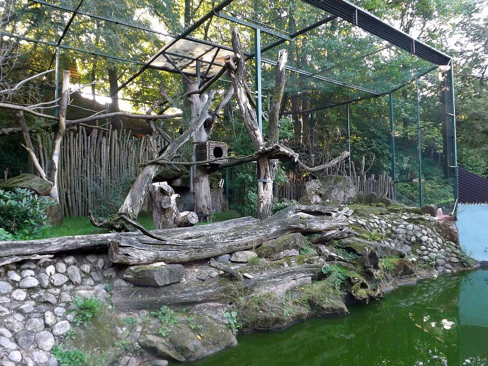 Anlage für Rote Pandas (Zoo Saarbrücken)