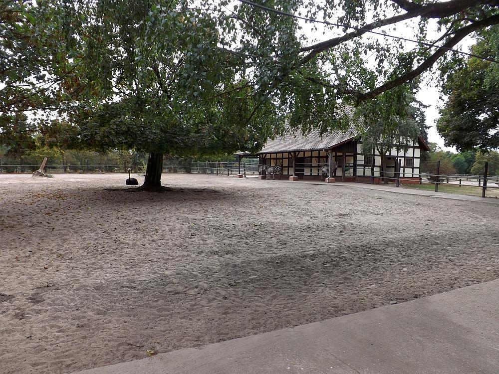 Afrikaanlage (Naturtierpark Ströhen)