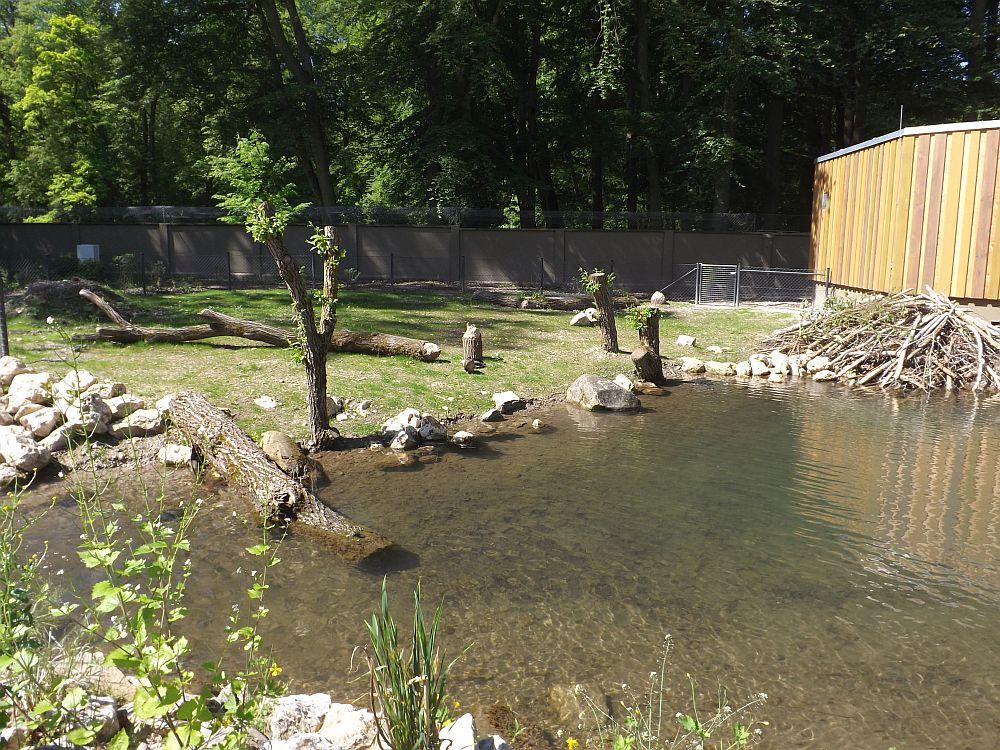 Biberanlage (Zoo Augsburg)