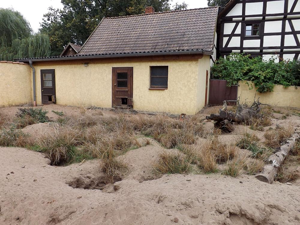 Erdmännchenanlage (Naturtierpark Ströhen)