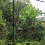 Außenanlage der Fischkatzen (Tierpark Hellabrunn)