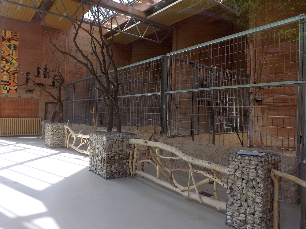 Giraffenhaus, Innenansicht (Zoo Augsburg)