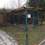 Anlage für Iltisfrettchen (Tiergarten Freiberg)