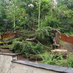 Anlage für Kleine Pandas (Zoopark Chomutov)