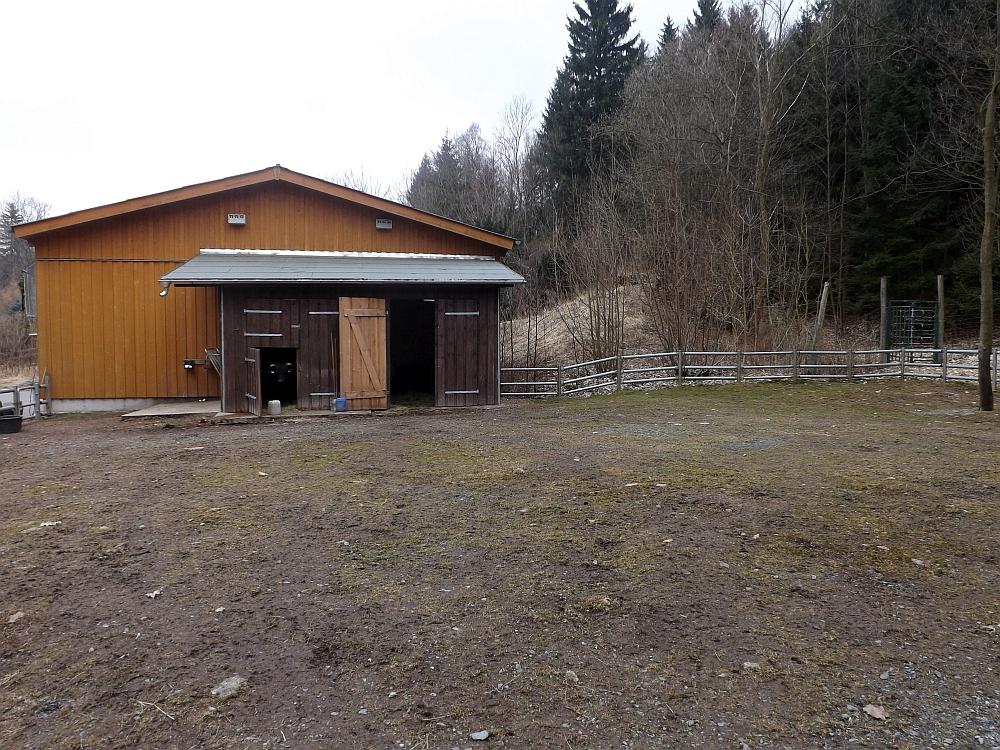Anlage der Dahomeyrinder (Wildpark Osterzgebirge)