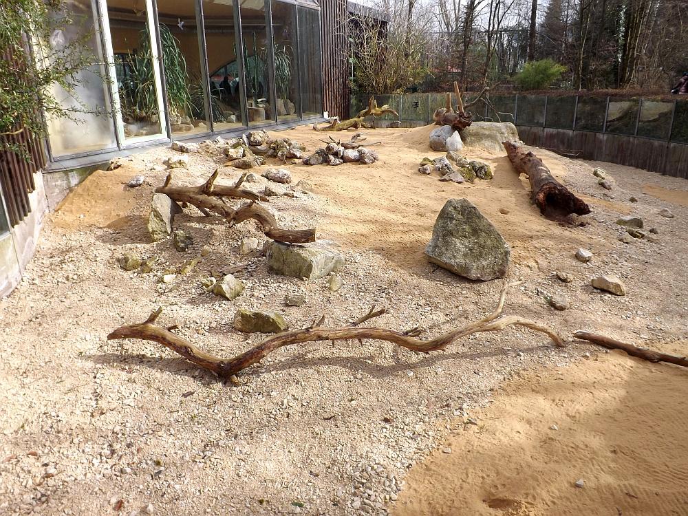 Außenanlage der Fenneks (Zoo Augsburg)