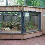 Außenanlage für Arguswarane (Tiergarten Worms)