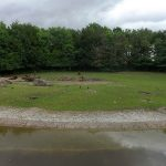 Bisonanlage (Tierpark Hellabrunn)
