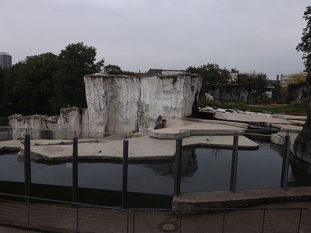 Eisbärenanlage (Zoo Karlsruhe