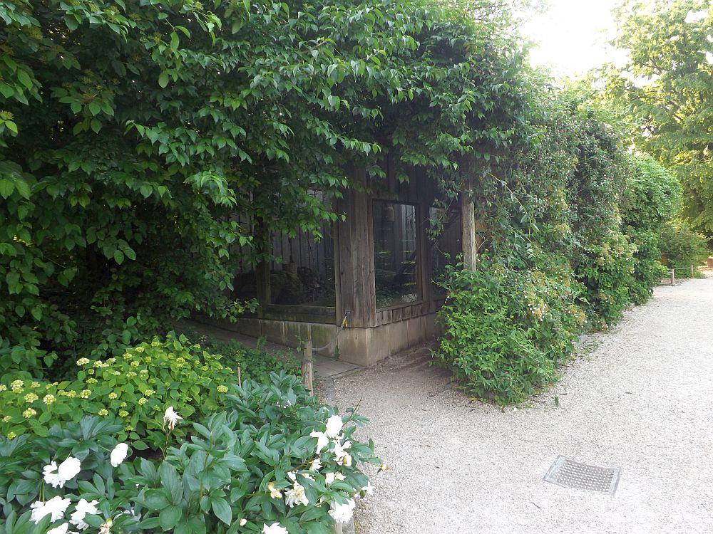 Neuntöteranlage (Zoo Heidelberg)