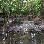 Stachelschweinanlage (Tierpark Hellabrunn)
