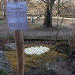 Straußennest (Tierpark Hellabrunn)