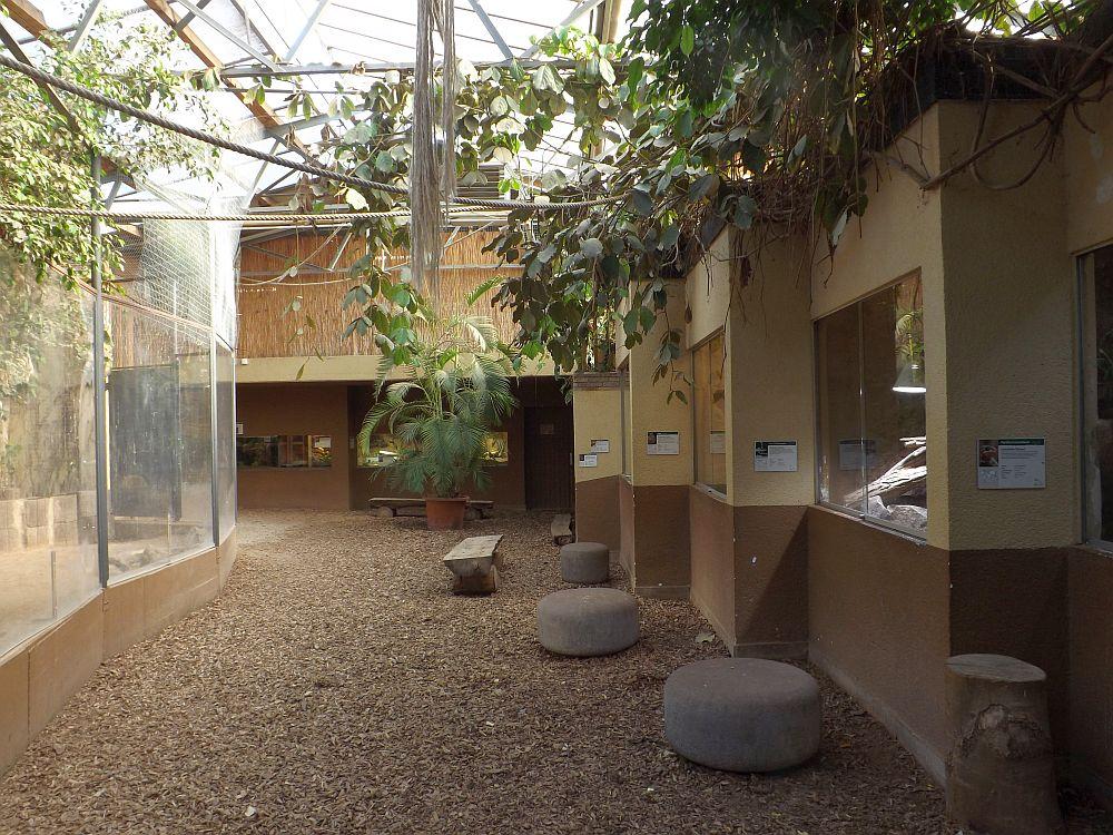 Tropenhaus (Tiergarten Worms)