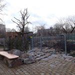Waschbärenanlage (Zoo Heidelberg)