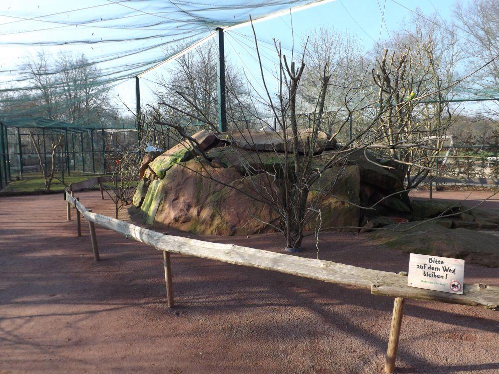 Wellensittichanlage (Tiergarten Worms)