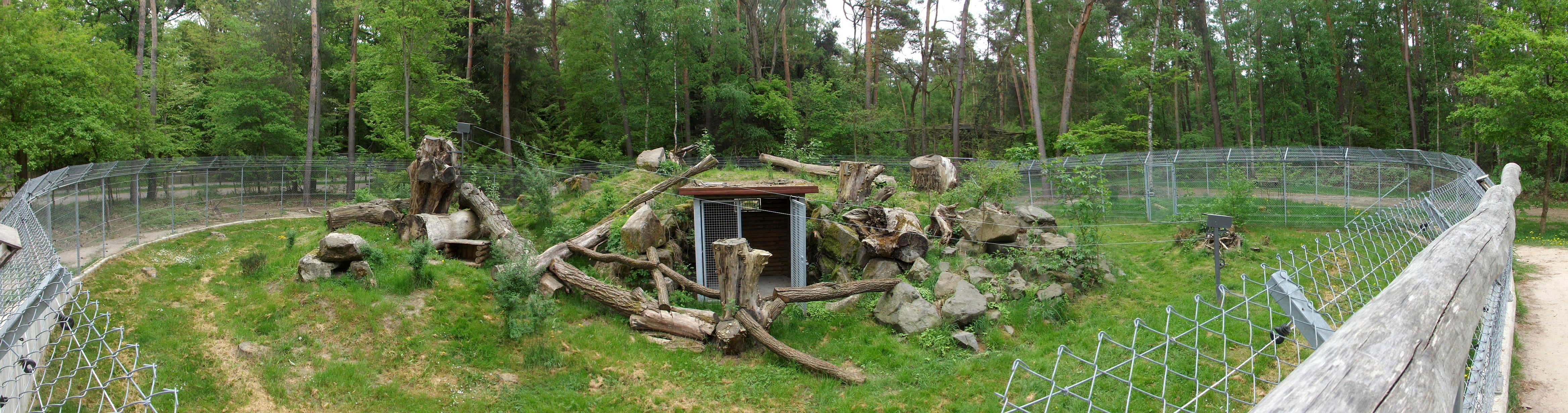 Wildkatzenanlage (Alte Fasanerie Hanau)