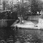 Zoo Leipzig, Robbenfütterung im Zoo Leipzig ca. 1928 (Christoph Kaufmann, Fotoatelier Hermann Walter)