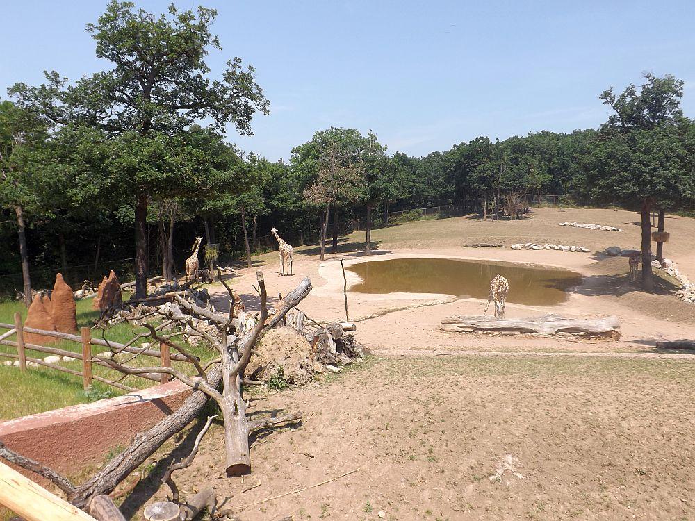 Afrikaanlage (Zoo Brno)