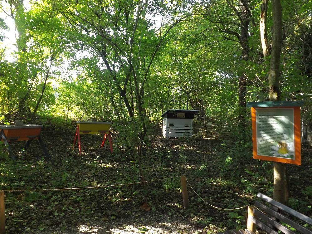 Bienenstand (Vogelpark Olching)