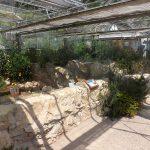 Mediterraneum (Zoo Plzen)