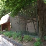 Tamarinanlage (Zoo Brno)