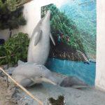 Baiji (Zoo Chleby)
