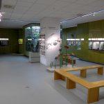 Insektarium (Museum für Naturkunde Chemnitz)