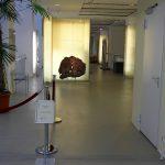 Museum für Naturkunde Chemnitz