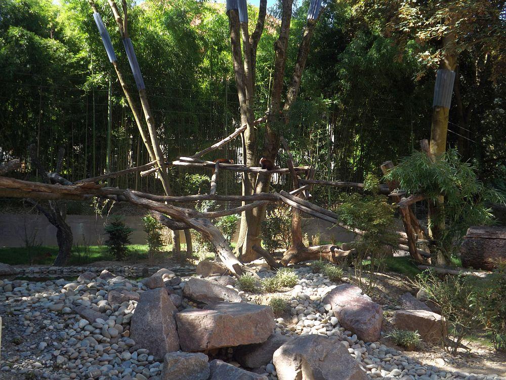 Anlage für Kleine Pandas, Muntjaks und Zwergotter (Zoo Mulhouse)