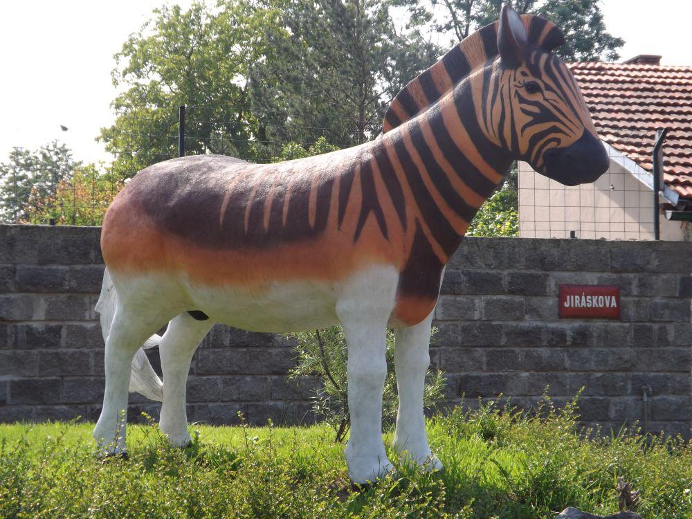 Quagga (Zoo Chleby)