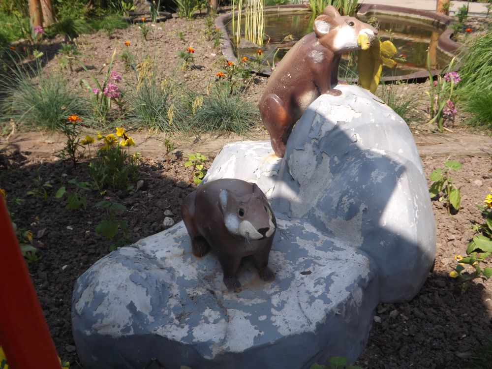 Sardischer Pfeifhase (Zoo Chleby)