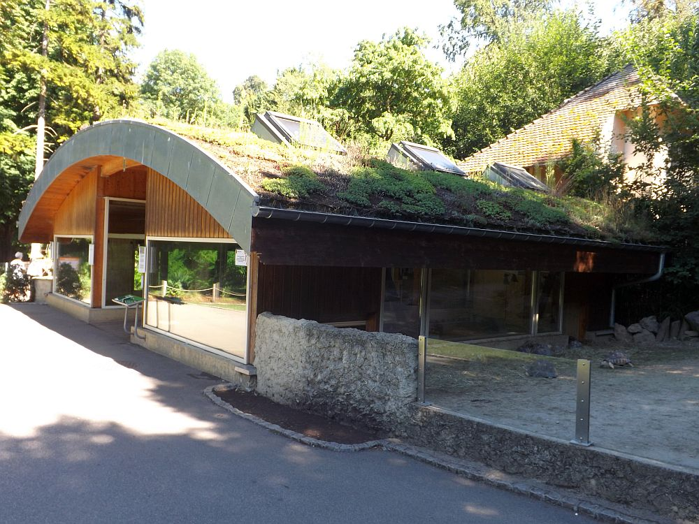 Schildkrötenhaus (Zoo Mulhouse)