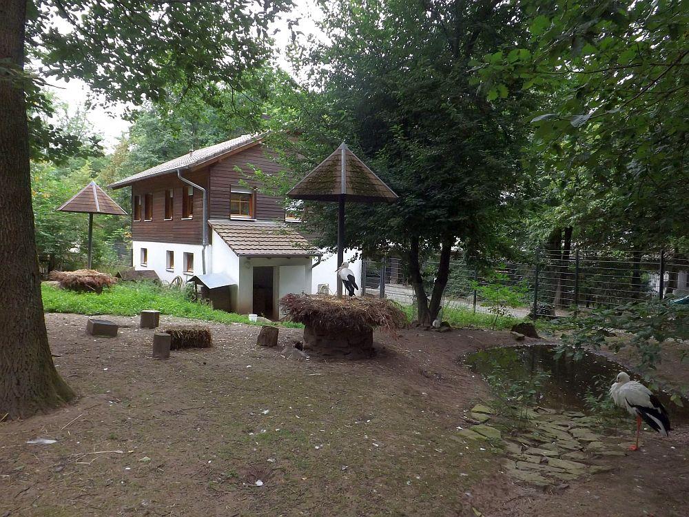 Storchenanlage (Wildpark Pforzheim)