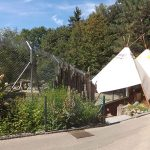 Wolfsanlage (Zoo Mulhouse)