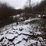 Bärenanlage (Wildparadies Tripsdrill)