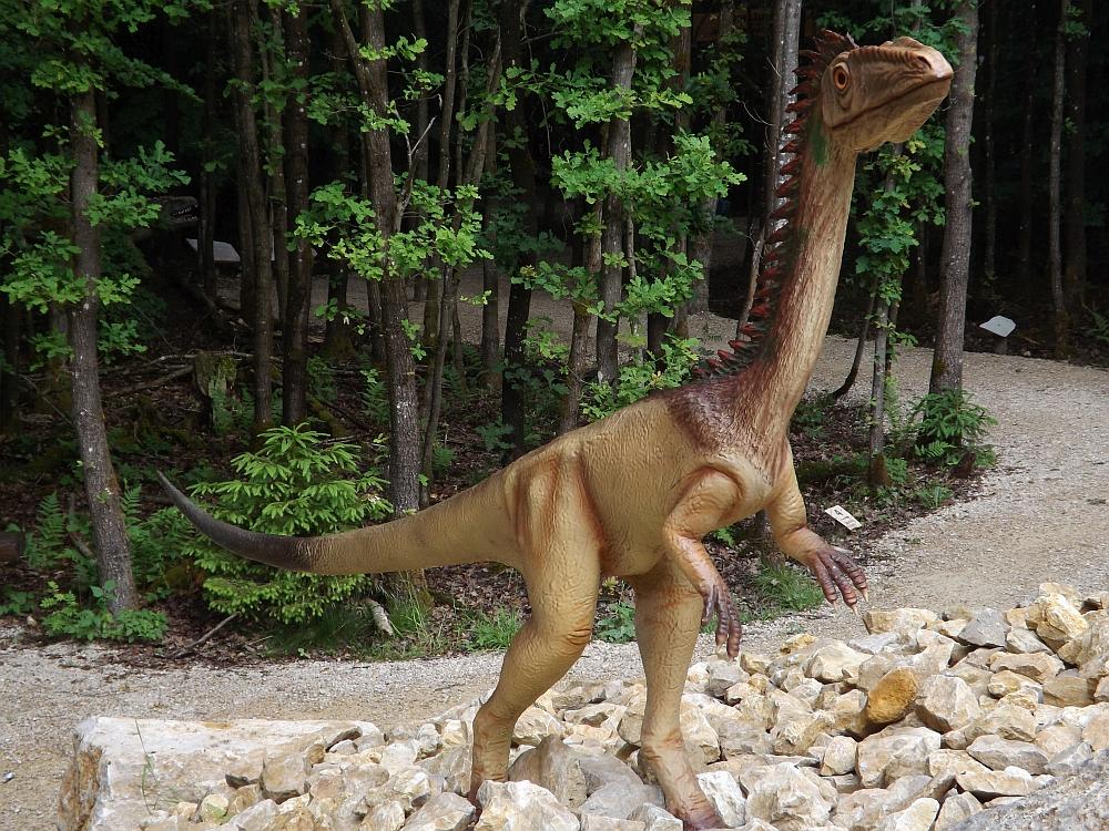 Coelophysis bauri (Dinopark Altmühltal)