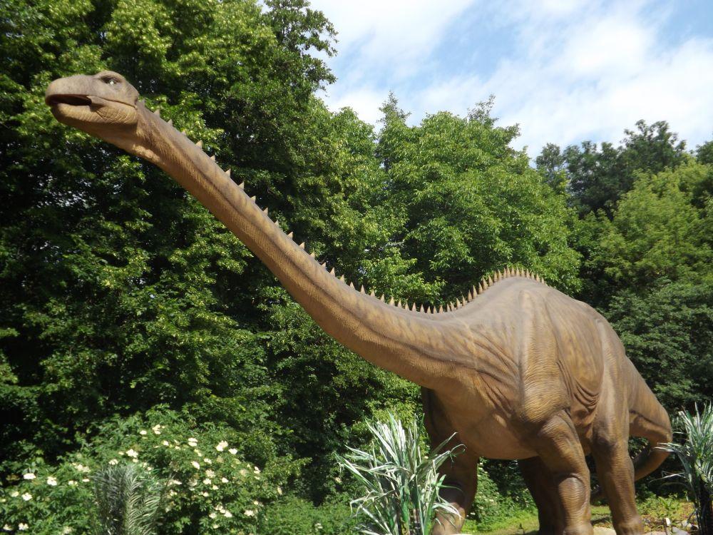 Diplodocus (Dinopark Vyskov)