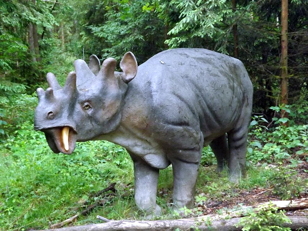 Eobasileus cornutus (Dinopark Altmühltal)