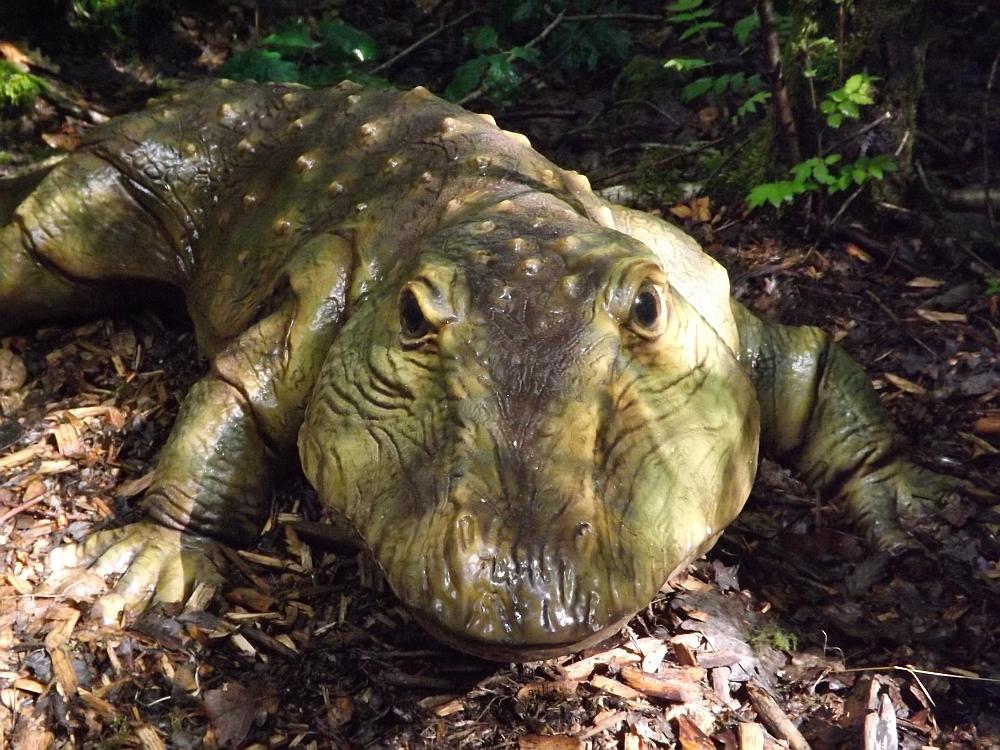 Eryops megacephalus (Dinopark Altmühltal)