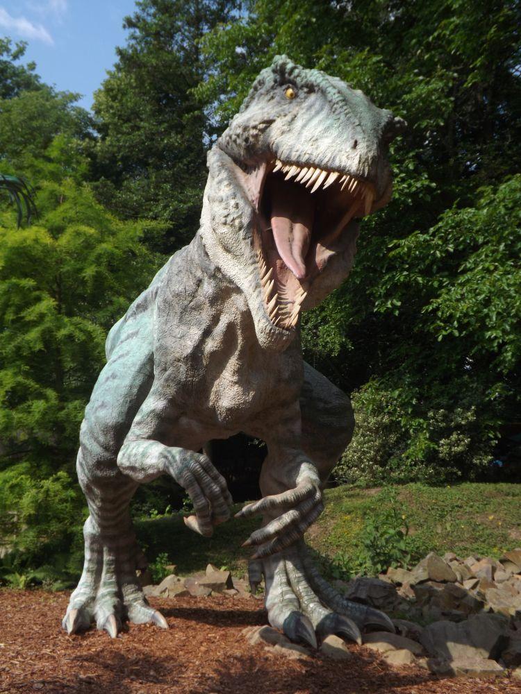 Giganotosaurus (Dinopark Vyskov)