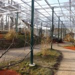 Vogelvoliere (Zoo Hof)