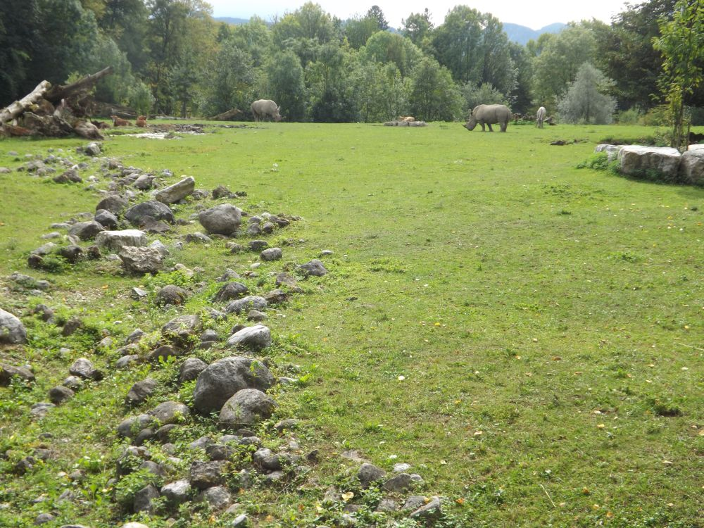 Afrikasavanne (Zoo Salzburg)