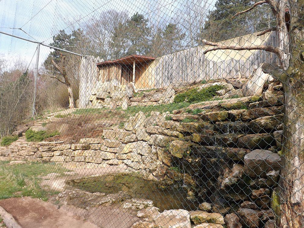 Geiervoliere(Thüringer Zoopark)