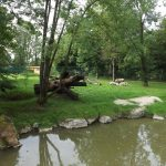 Gepardenanlage (Zoo Salzburg)