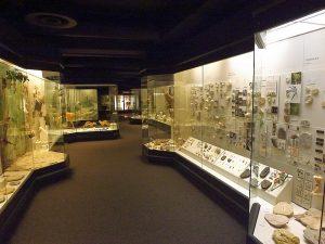 Naturmuseum Augsburg