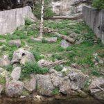 Vielfraßanlage (Zoo Salzburg)