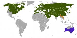 Verbreitung des Rotfuchs (grün: Natürliches Vorkommen, Blau: eingeführt, Braun: Ungesichertes Vorkommen)