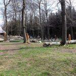 Adventuregolf (Tierpark Hexentanzplatz)