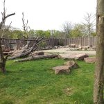 Nashornanlage (Zoo Magdeburg)
