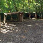 Anlage für Dahomeyrinder (Vogelpark Abenspark)
